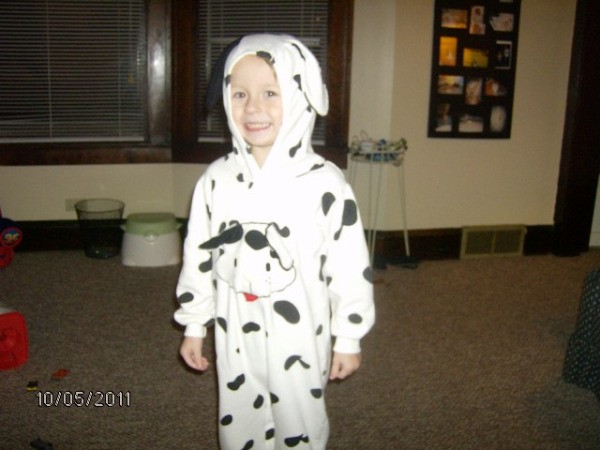 Boy in Dalmatian Costume  sc 1 st  small dog breeds & Dalmatian Costume Photograph | Boy In Dalmatian Costume