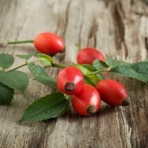 Rose hips on rough wood background.