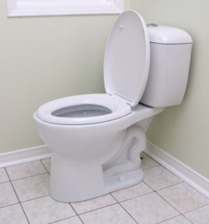 White Low Flow Toilet