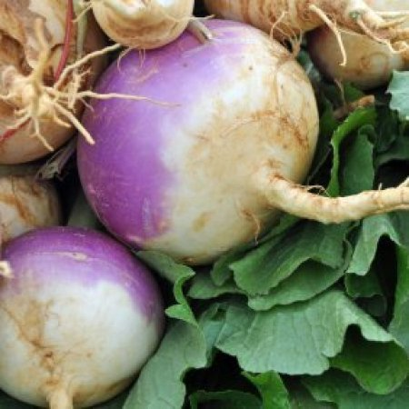 Turnips with greens.