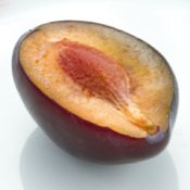 Half of plum on white plate