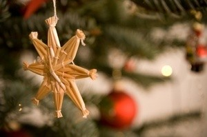 Photo of a Christmas ornament hanging on a tree.