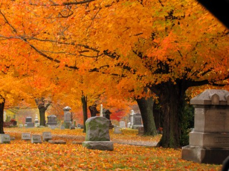 Cemetery With Fall Colored Leaves in Trees and on Ground