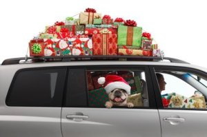 Dog and Owner in Car Loaded with Presents