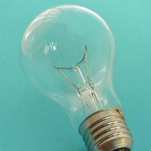 Disposing of Light Bulbs (Incandescent), A light bulb.