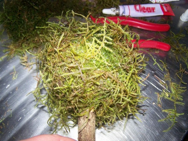 Moss covered styrofoam ball