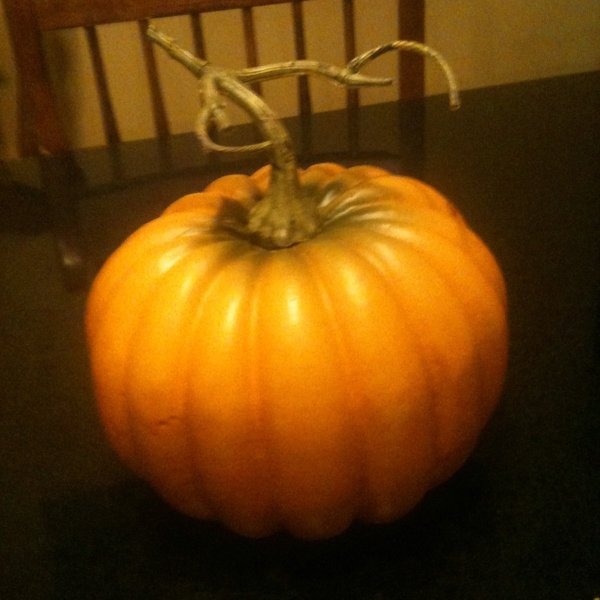 View of pumpkin before starting project.