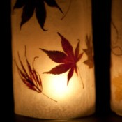 Autumn Lanterns, Lit Up Close