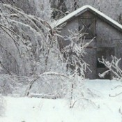Ice storm with barn.