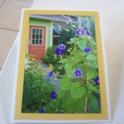 Card made with garden photo of morning glory and rubeckia.