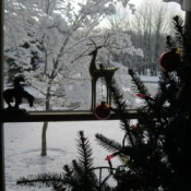 Yard winterscape through the window.