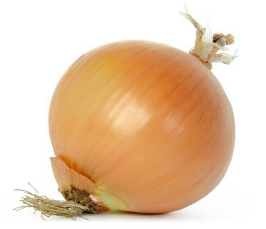 an onion before freezing