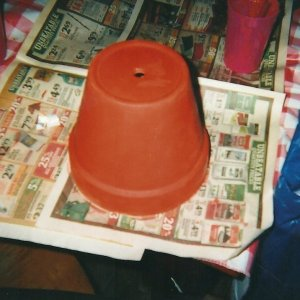 Preparing to paint pot on newspaper.