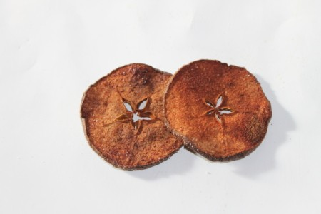 Two apple slices that have been dried and seasoned.