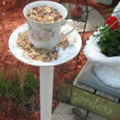 A bird feeder made from an old tea cup.