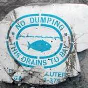 A No Dumping sign for water drainage.
