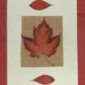 A card with autumn leaves.