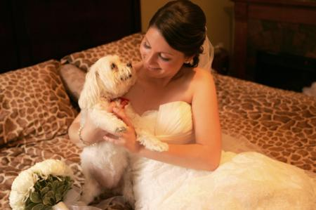 Lulu (white Maltese dog) with woman in wedding dress on bed.