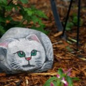 rock painted like cat