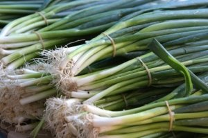 Freezing Green Onions