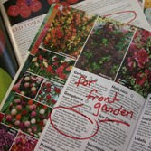 Colorful seed catalogs to be used in crafts.