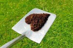 Mulching Organic Material