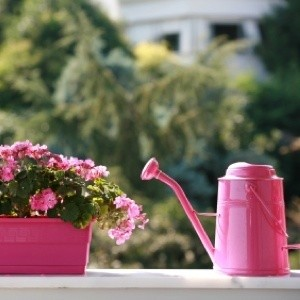Watering can next to a pink planter box