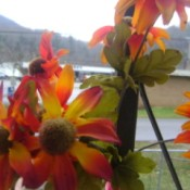 Orange and yellow artificial flowers