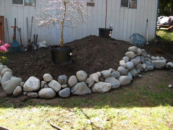 Building a rock garden thriftyfun for Making a rock garden border