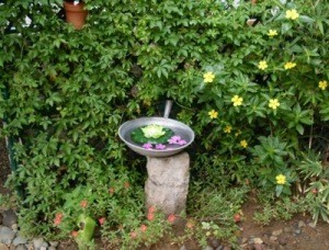 Frying Pan Birdbath 2
