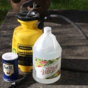 Salt and Vinegar Weed Killer