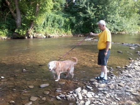 Barli, a Lab-St. Bernard mix, is walking in a stream with a man.