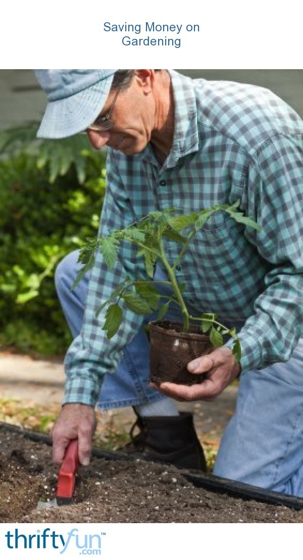 Saving money on gardening thriftyfun - Money saving tips in gardening ...