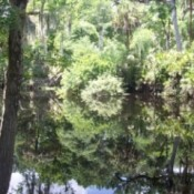 Hillsborough River Park