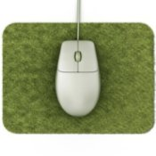 Mouse on Green Mouse Pad