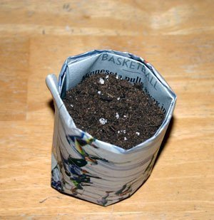 Newspaper Seed Starting Pot