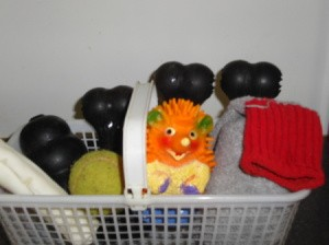 Berry basket for pet toys.