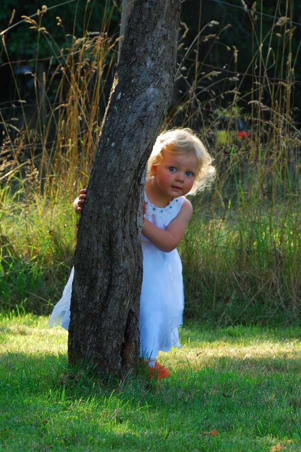 Frugal Flower Girl Tips Thriftyfun