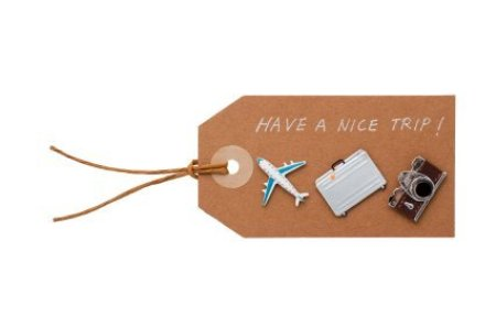 Homemade Luggage Tag With Pins