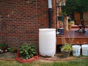 White Rain Barrel