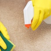 Spraying Carpet Stain