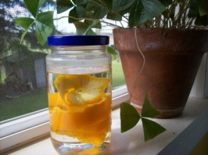 Add citrus peels to vinegar