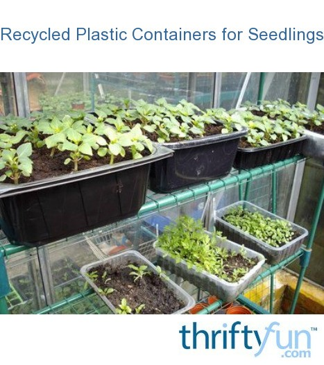 Recycled seedling container ideas thriftyfun - Recycled containers for gardening ...