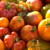 Heirloom tomatoes at the farmer's market