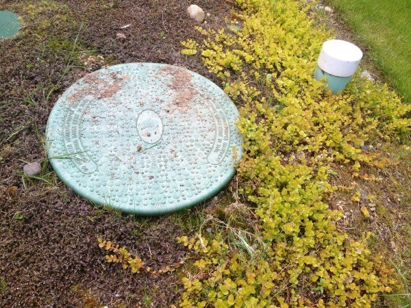 Septic Tank Cleaner Septic Safe Cleaners |