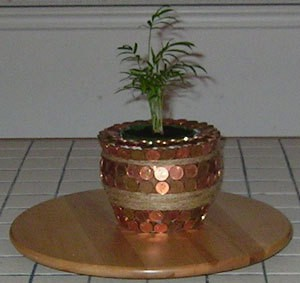 Penny covered flower pot