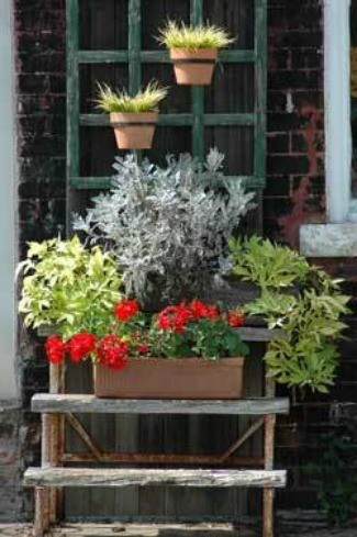 Patio Planter 1