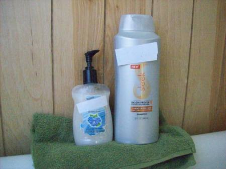 Economy size bottle of shampoo and smaller pump bottle.