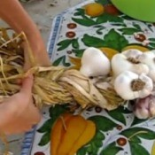braiding garlic
