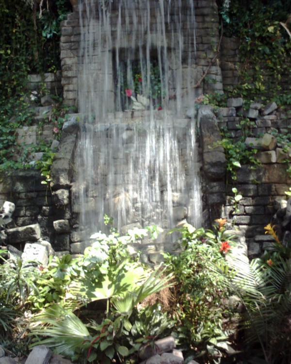 Waterfall in rainforest exhibit.
